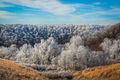 Ozark Rime Ice print