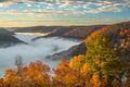 Wilderness Fog print