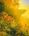 Golden Light at Hawksbill Crag print