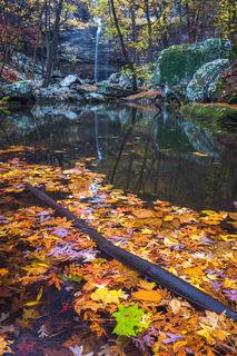 Arkansas State Parks, Cedar Falls, autumn leaves, Petit Jean, Petit Jean State Park