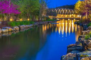 Bentonville Arkansas, Crystal Bridges, Crystal Bridges Museum, Bentonville, Arkansas art, blue, redbud