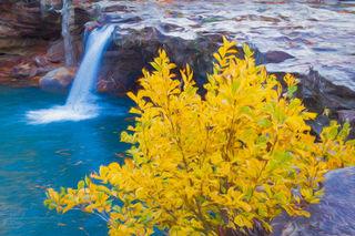 Fall Colors at Falling Water