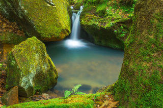 fern, green, moss, small waterfall, spring