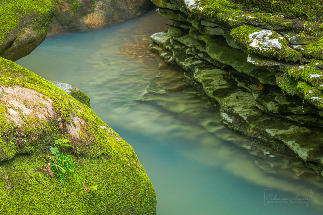 Ozarks, creek, intimate landscapes, spring, green, stream. water, moss, photo
