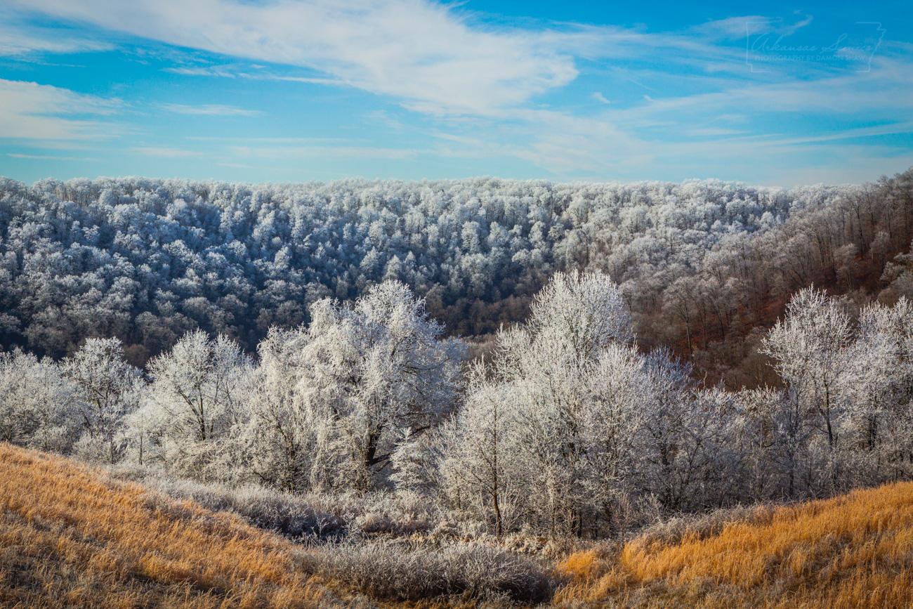 rime ice, hoar frost, ice, winter, Ozarks, photo