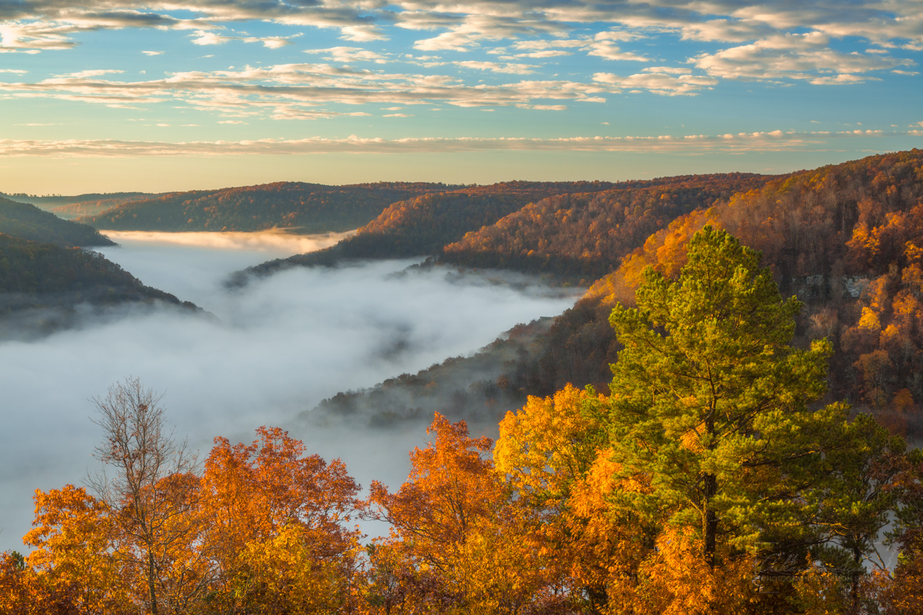 Looking into the foggy Upper Buffalo Wilderness of Arkansas on a November morning.