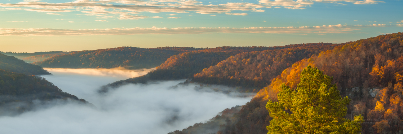 Panorama of the Upper Buffalo Wilderness of Arkansas on a foggy morning in November 2018.
