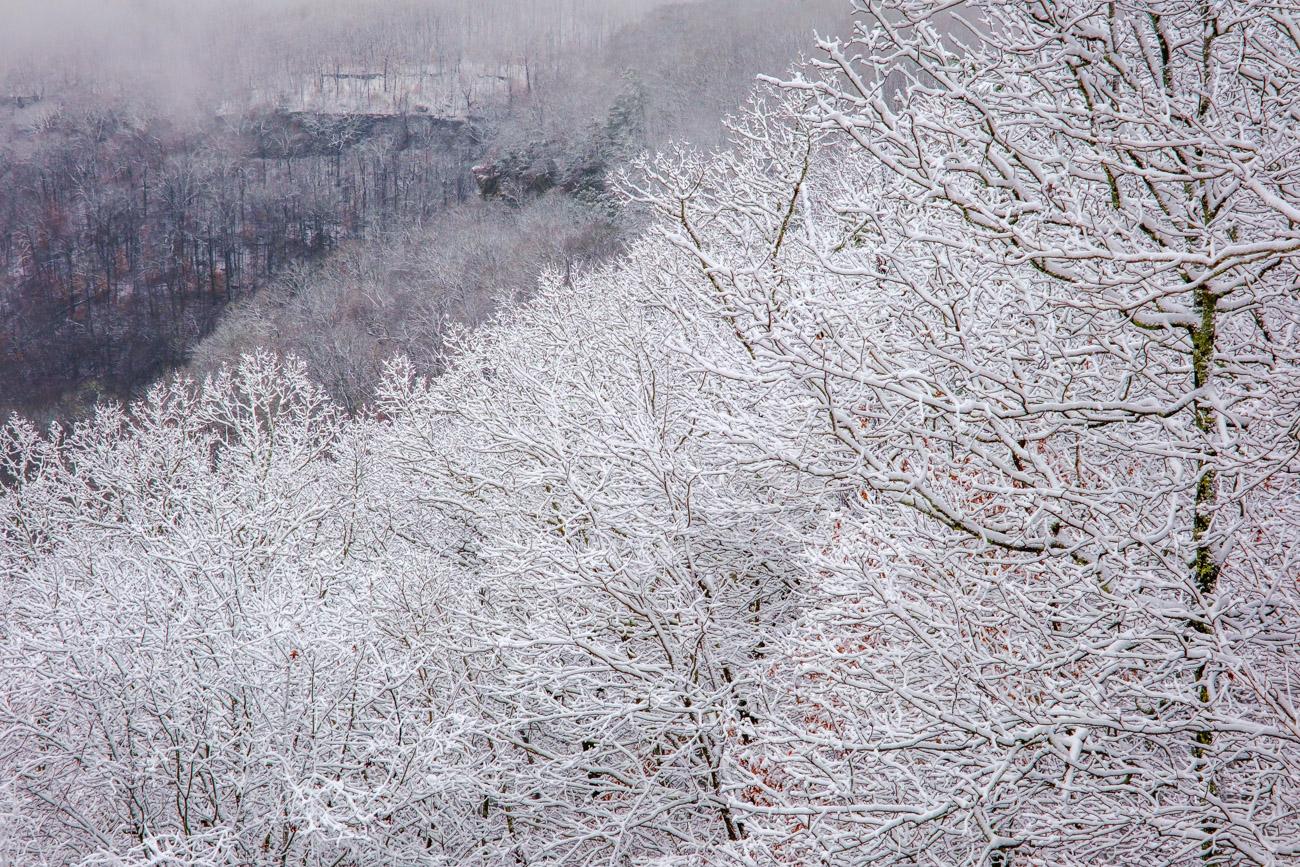 snow, snow in Arkansas