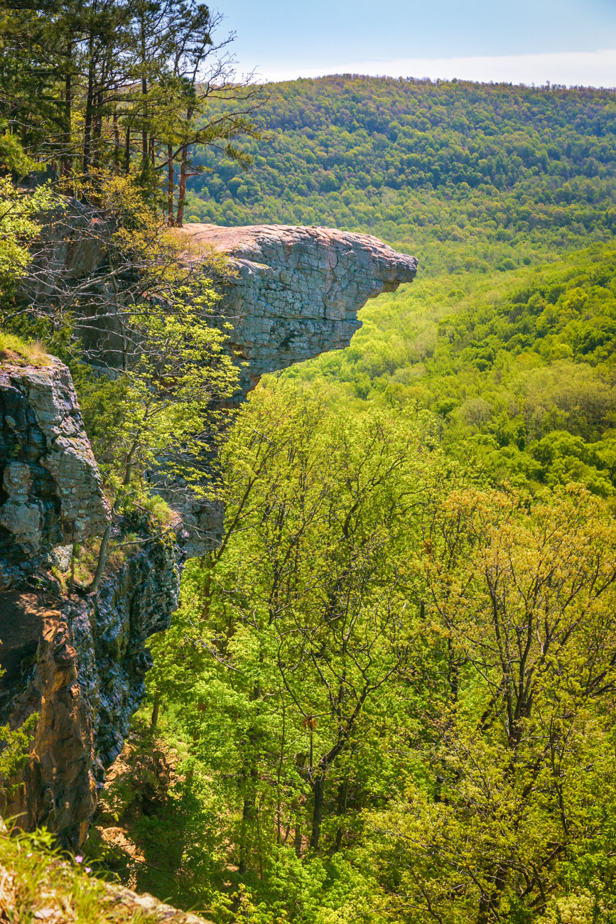 The rock outcrop known as Hawksbill Crag in the Upper Buffalo Wilderness in Newton County.