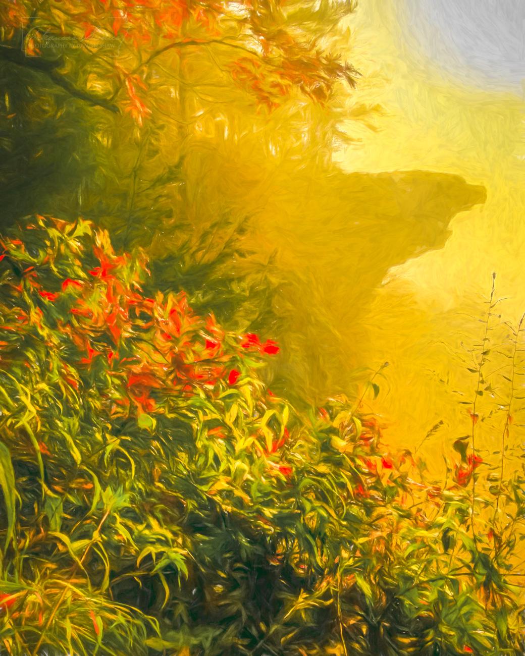 Digital art on canvas of Hawksbill Crag on a foggy morning.